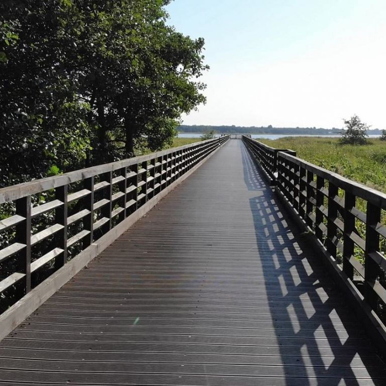 Rezerwat przyrody Słone Łąki