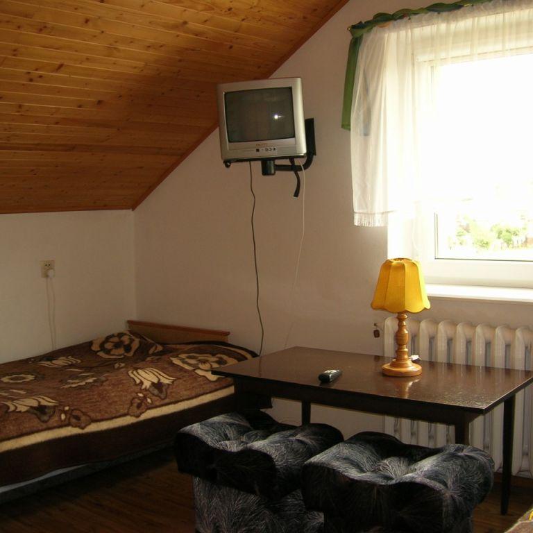 Zielony dom - zdjęcie 1349