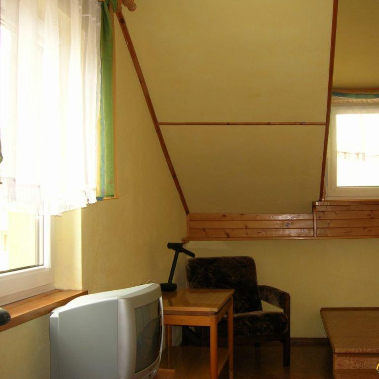 Zielony dom - zdjęcie 1352