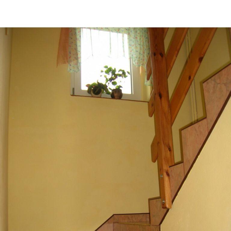 Zielony dom - zdjęcie 1355